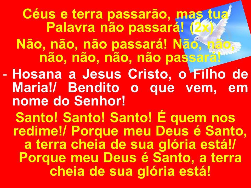 Céus e terra passarão, mas tua Palavra não passará! (2x)