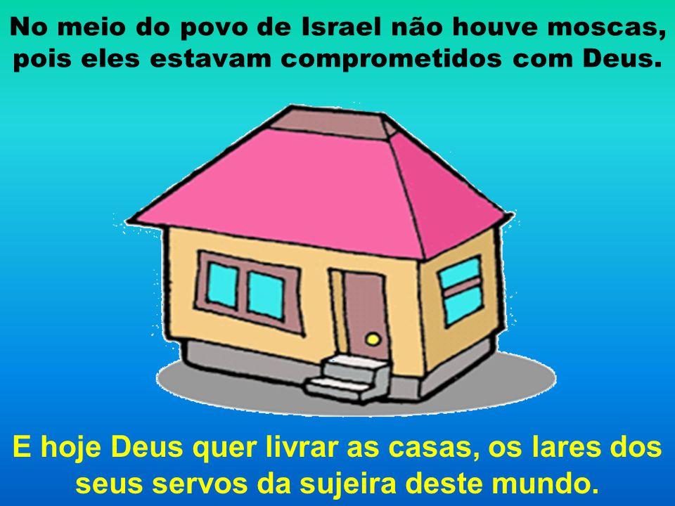No meio do povo de Israel não houve moscas, pois eles estavam comprometidos com Deus.