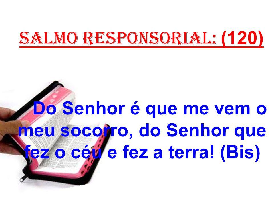salmo responsorial: (120) Do Senhor é que me vem o meu socorro, do Senhor que fez o céu e fez a terra.