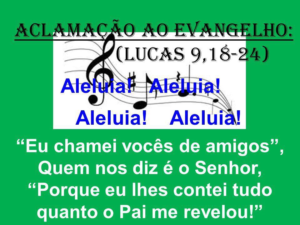 (Lucas 9,18-24) Eu chamei vocês de amigos , Quem nos diz é o Senhor,