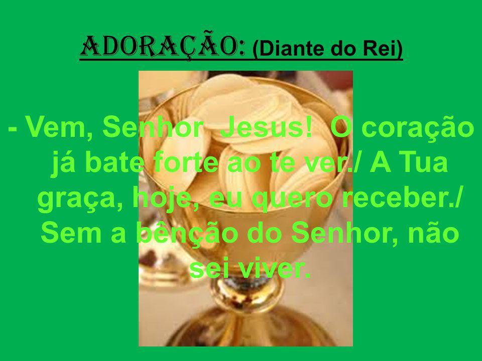 ADORAÇÃO: (Diante do Rei) - Vem, Senhor Jesus