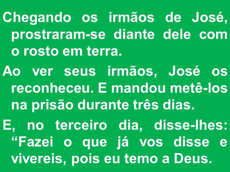 Chegando os irmãos de José, prostraram-se diante dele com o rosto em terra.