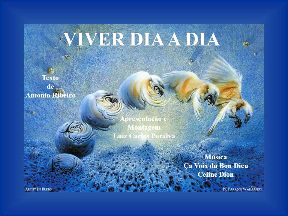 VIVER DIA A DIA Texto de Antonio Ribeiro Apresentação e Montagem