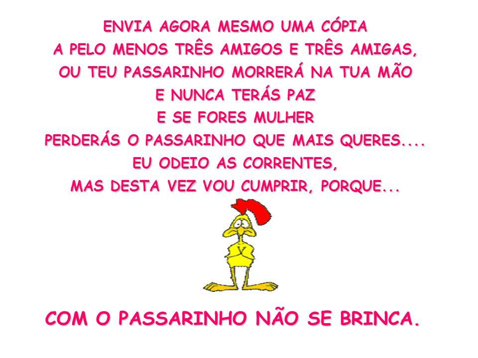 COM O PASSARINHO NÃO SE BRINCA.
