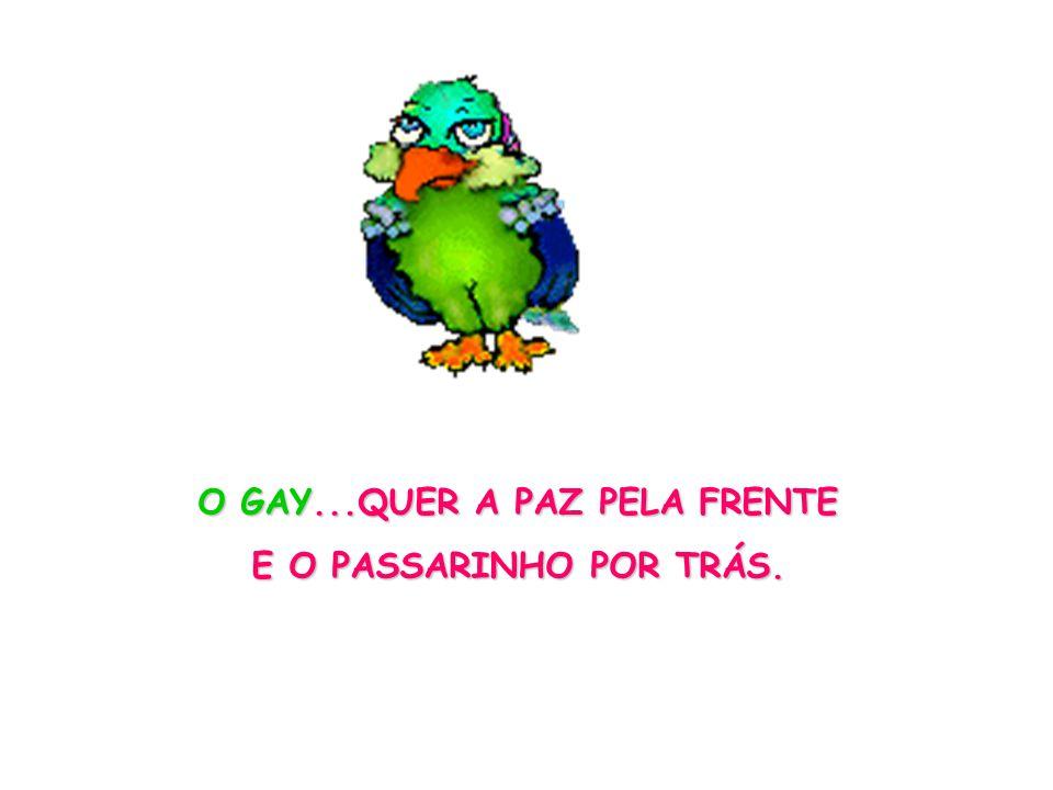 O GAY...QUER A PAZ PELA FRENTE