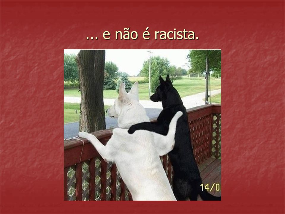... e não é racista.
