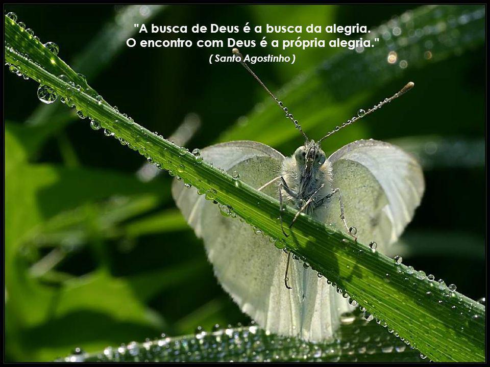 A busca de Deus é a busca da alegria