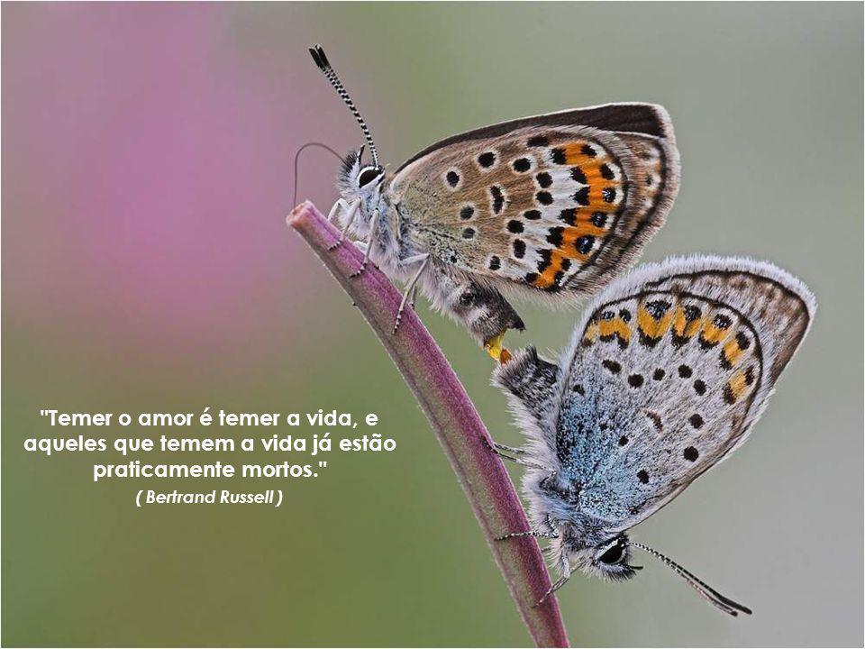 Temer o amor é temer a vida, e aqueles que temem a vida já estão praticamente mortos. ( Bertrand Russell )