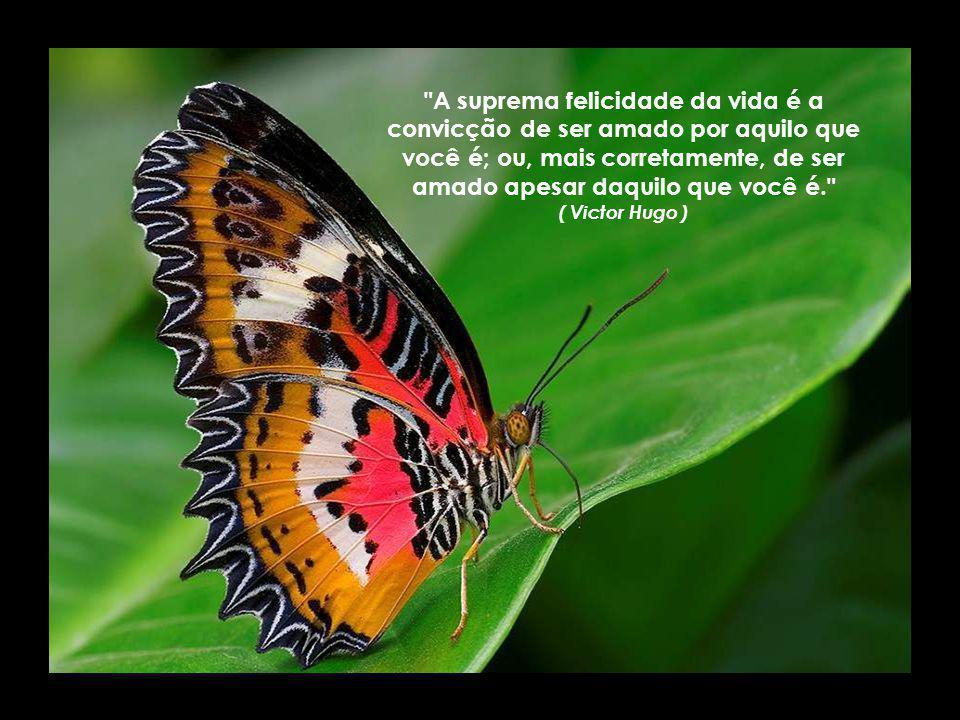 A suprema felicidade da vida é a convicção de ser amado por aquilo que você é; ou, mais corretamente, de ser amado apesar daquilo que você é. ( Victor Hugo )