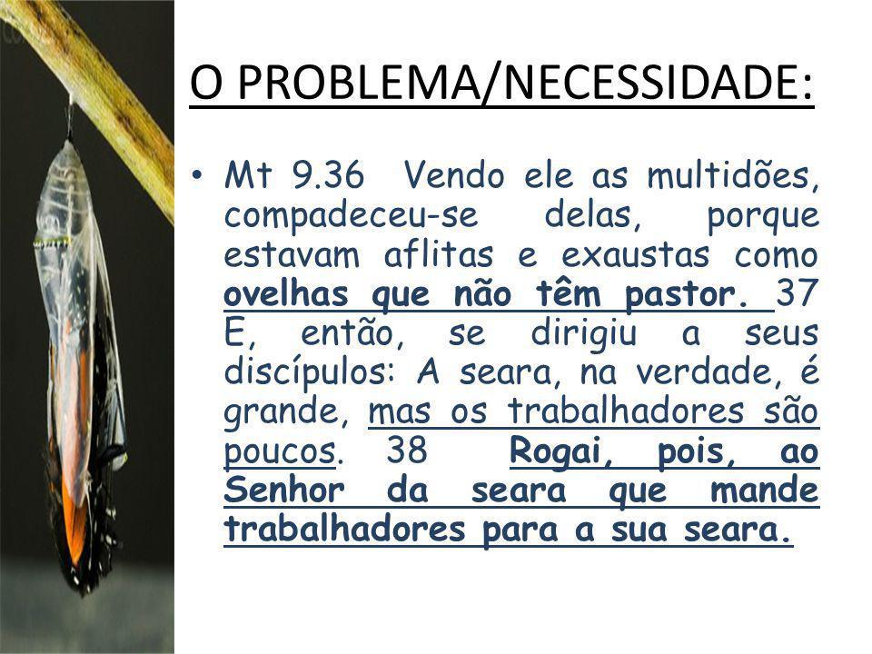 O PROBLEMA/NECESSIDADE: