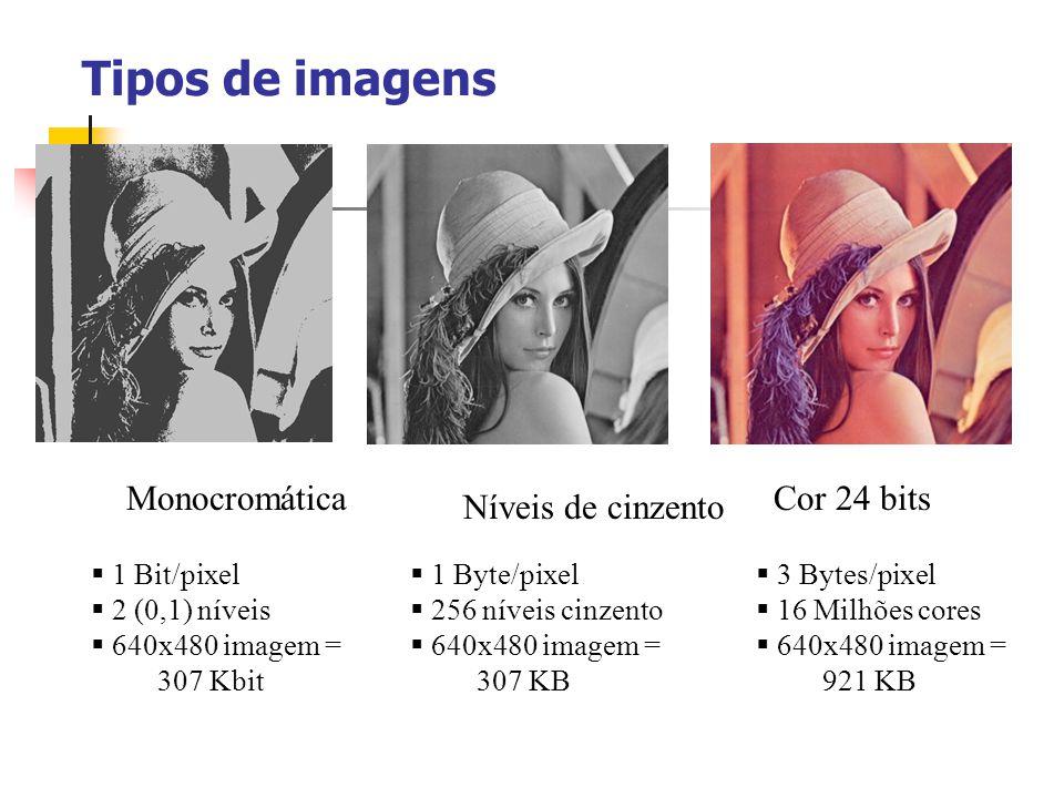 Tipos de imagens Monocromática Cor 24 bits Níveis de cinzento
