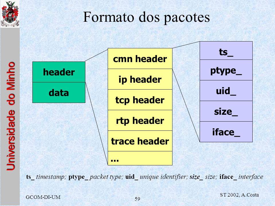 Formato dos pacotes ts_ cmn header ptype_ header ip header uid_ data