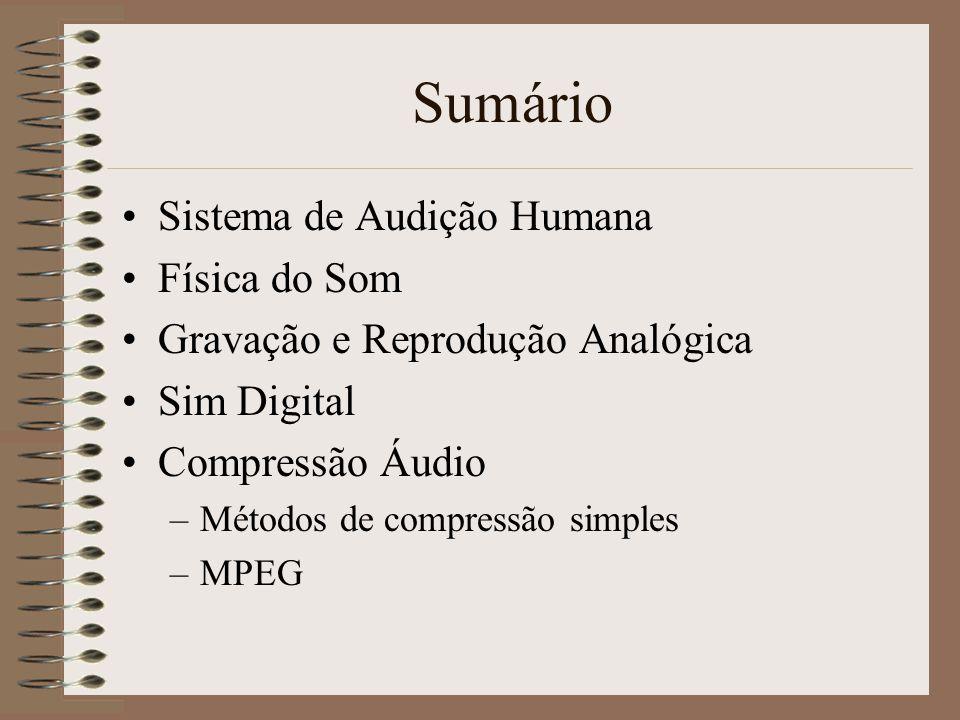 Sumário Sistema de Audição Humana Física do Som