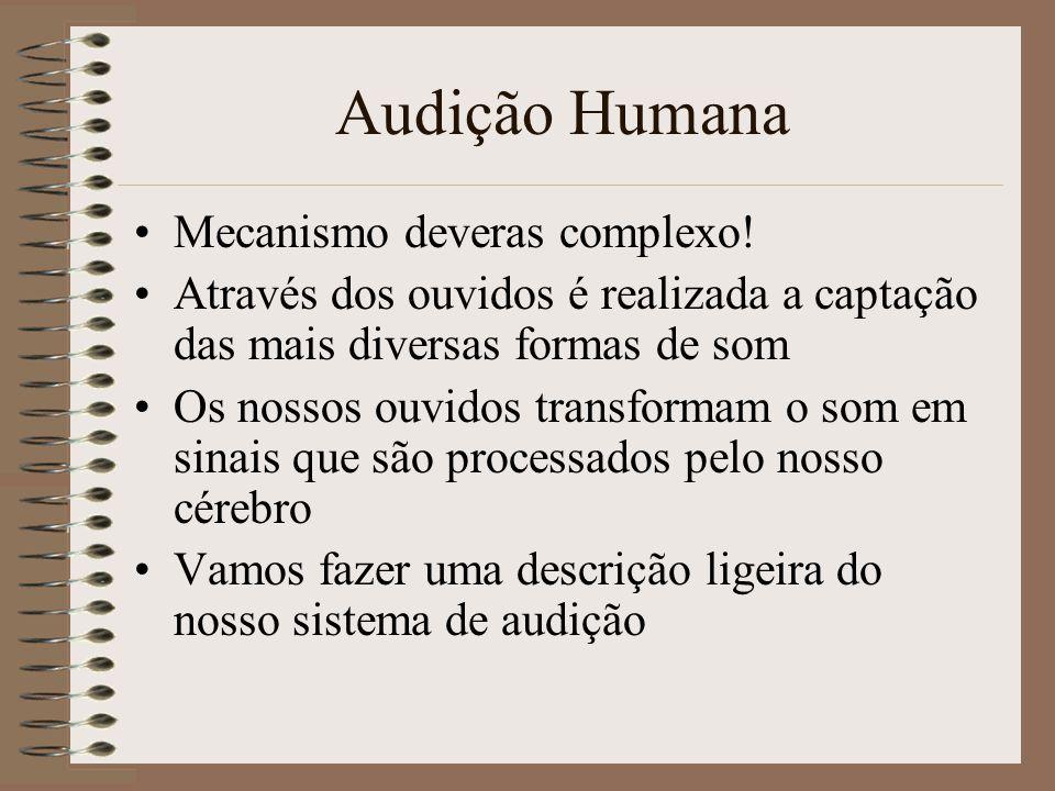 Audição Humana Mecanismo deveras complexo!