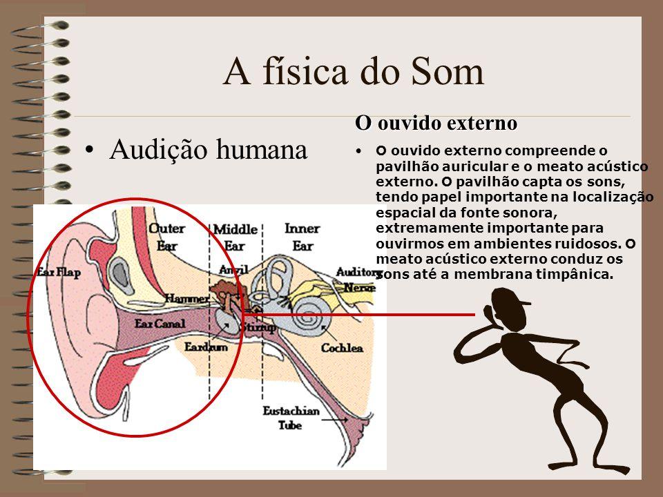 A física do Som Audição humana O ouvido externo