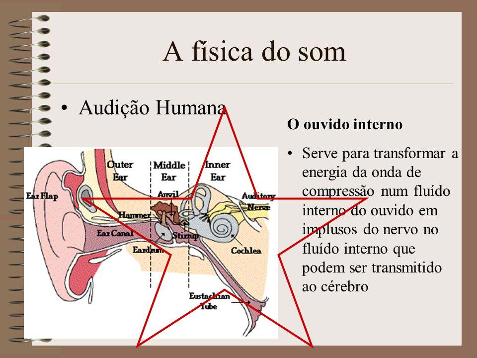 A física do som Audição Humana O ouvido interno