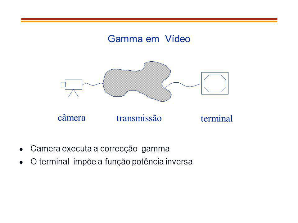 Gamma em Vídeo câmera transmissão terminal