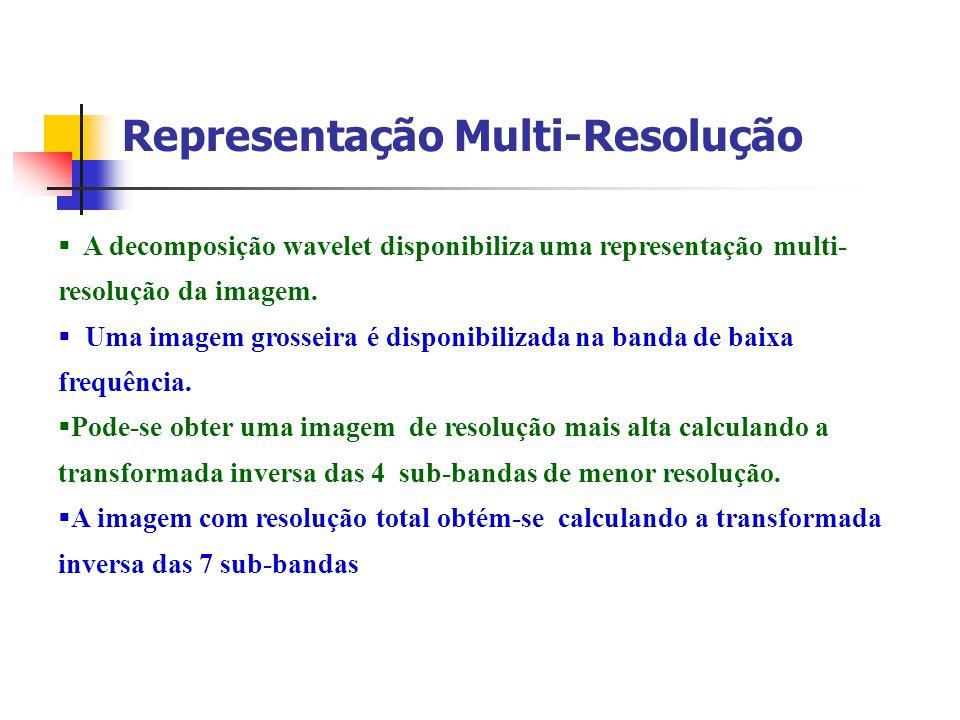 Representação Multi-Resolução