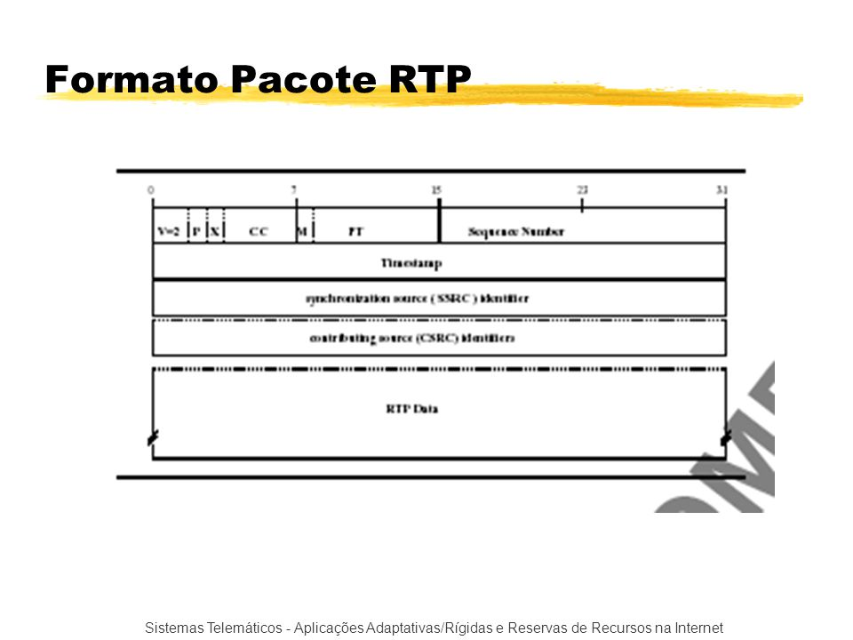 Formato Pacote RTP