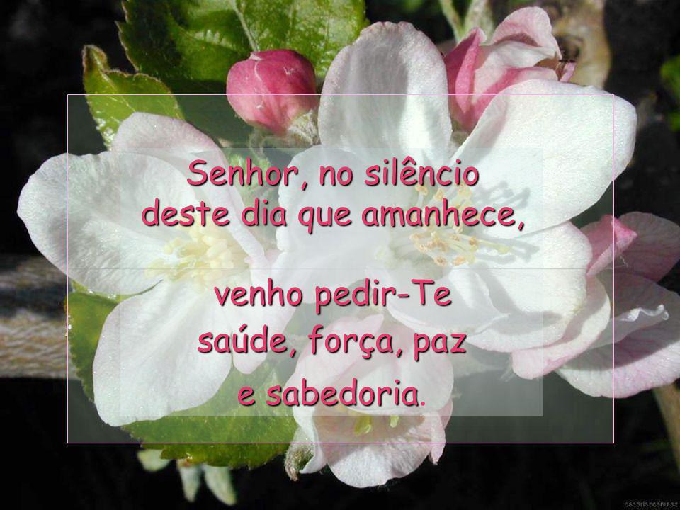 Senhor, no silêncio deste dia que amanhece, venho pedir-Te saúde, força, paz e sabedoria.