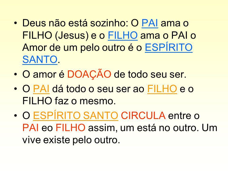 Deus não está sozinho: O PAI ama o FILHO (Jesus) e o FILHO ama o PAI o Amor de um pelo outro é o ESPÍRITO SANTO.