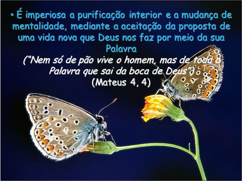 É imperiosa a purificação interior e a mudança de mentalidade, mediante a aceitação da proposta de uma vida nova que Deus nos faz por meio da sua Palavra