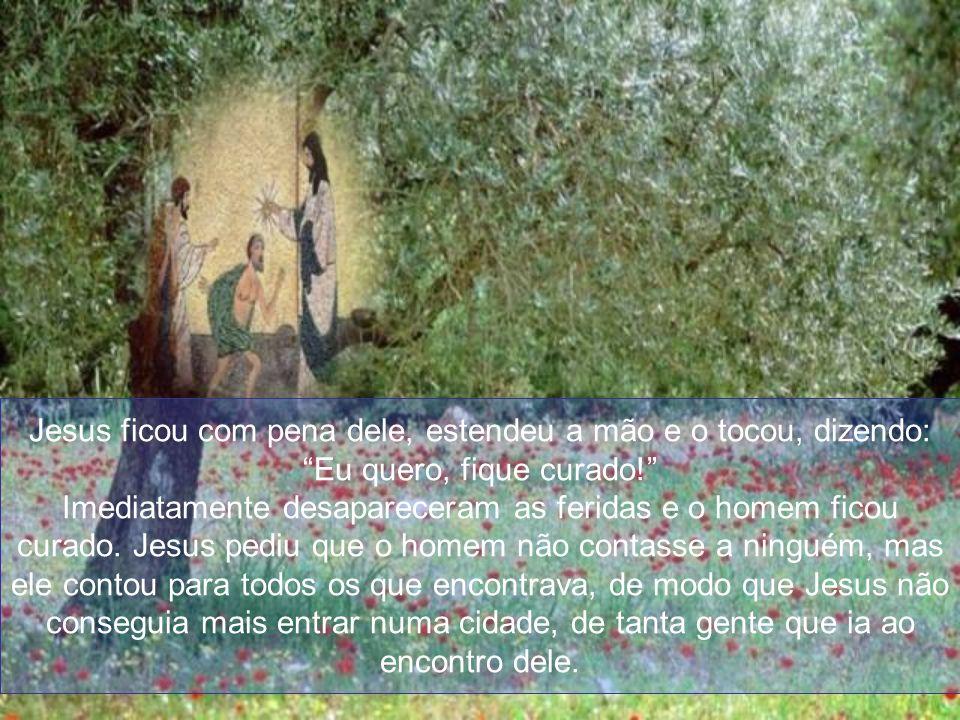 Jesus ficou com pena dele, estendeu a mão e o tocou, dizendo: Eu quero, fique curado!