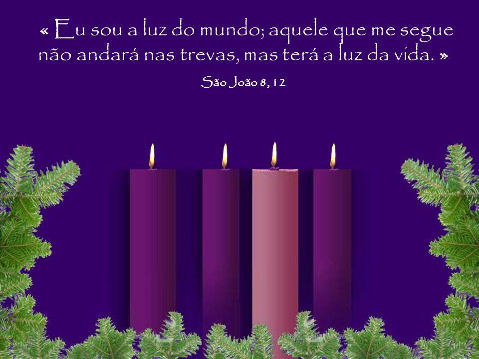« Eu sou a luz do mundo; aquele que me segue não andará nas trevas, mas terá a luz da vida. »
