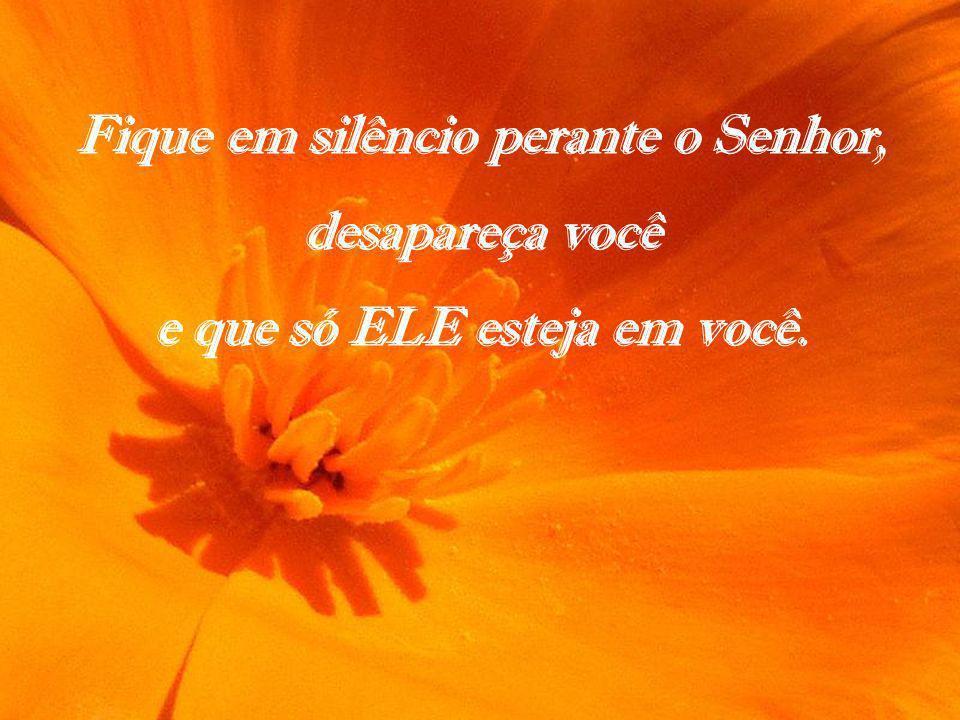 Fique em silêncio perante o Senhor, desapareça você