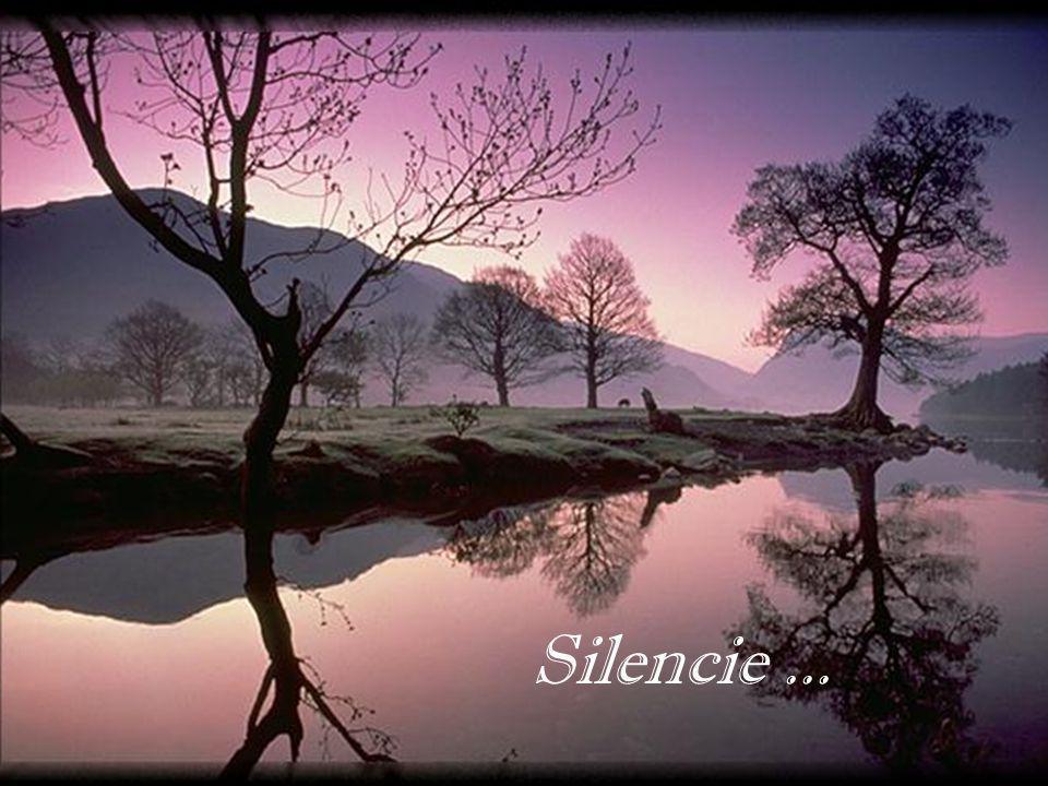 Silencie ...