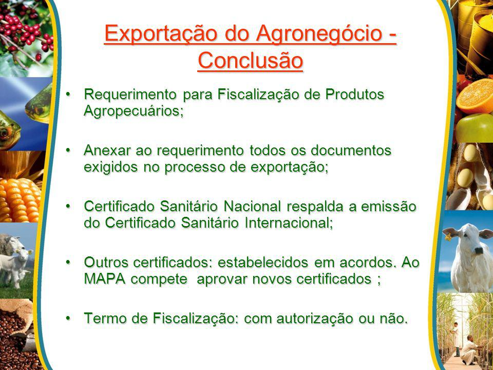 Exportação do Agronegócio - Conclusão