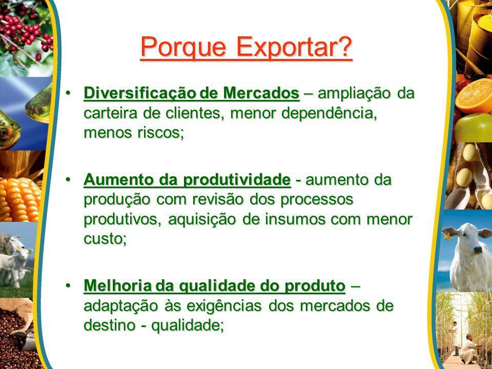 Porque Exportar Diversificação de Mercados – ampliação da carteira de clientes, menor dependência, menos riscos;
