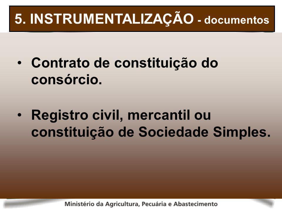 5. INSTRUMENTALIZAÇÃO - documentos