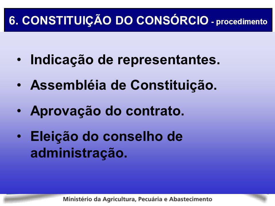 6. CONSTITUIÇÃO DO CONSÓRCIO - procedimento