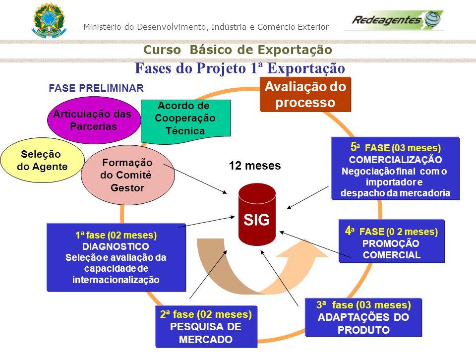 Fases do Projeto 1ª Exportação despacho da mercadoria