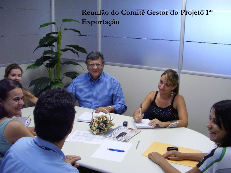 Reunião do Comitê Gestor do Projeto 1ª Exportação