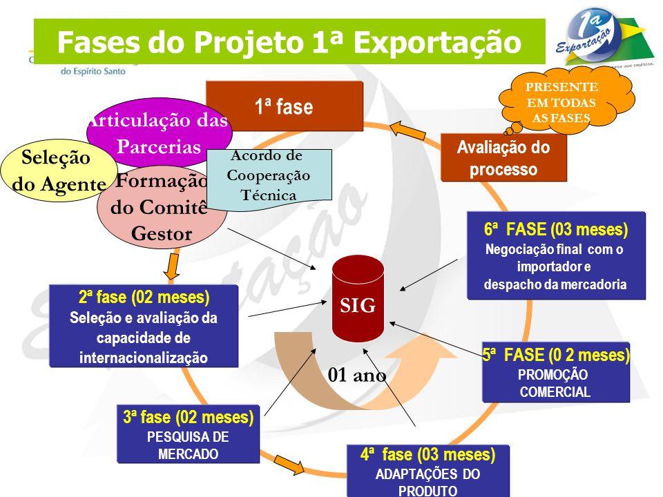 Fases do Projeto 1ª Exportação