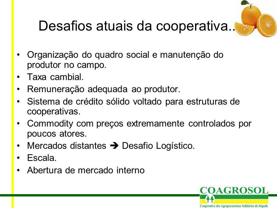 Desafios atuais da cooperativa...