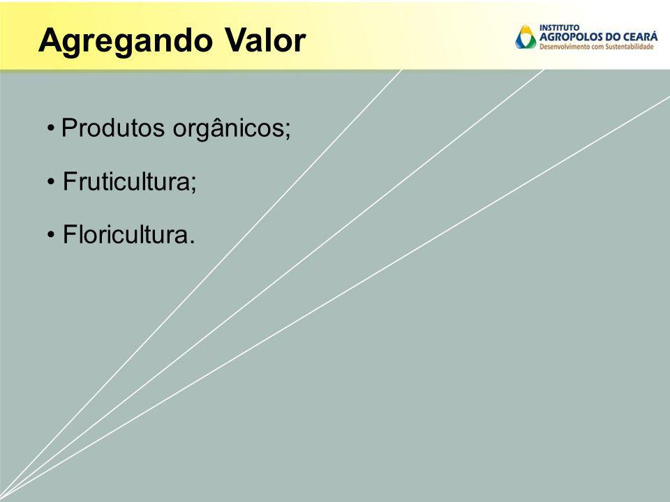 Produtos orgânicos; Fruticultura; Floricultura.