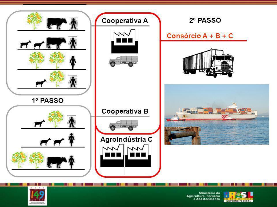 Cooperativa A Consórcio A + B + C 2º PASSO 1º PASSO Cooperativa B Agroindústria C