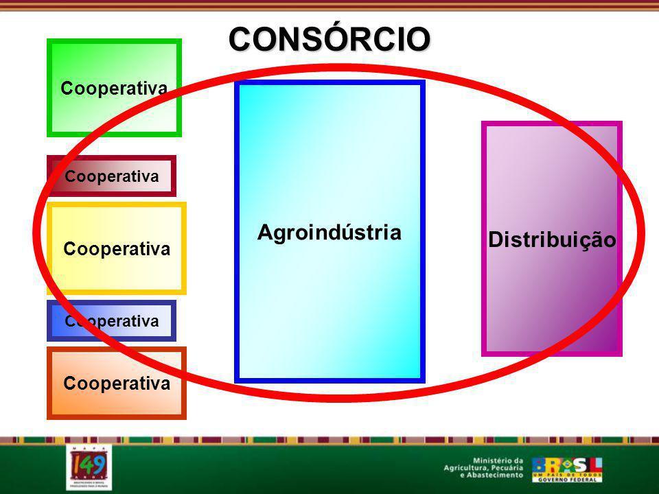 CONSÓRCIO CONSÓRCIO conceito Agroindústria Distribuição Cooperativa