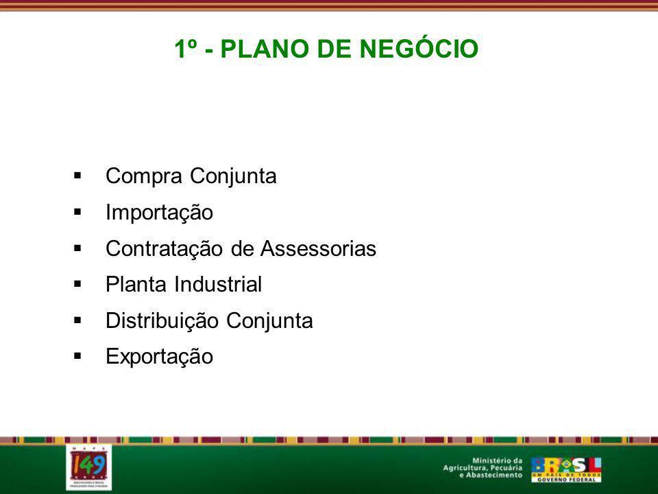 1º - PLANO DE NEGÓCIO Compra Conjunta Importação