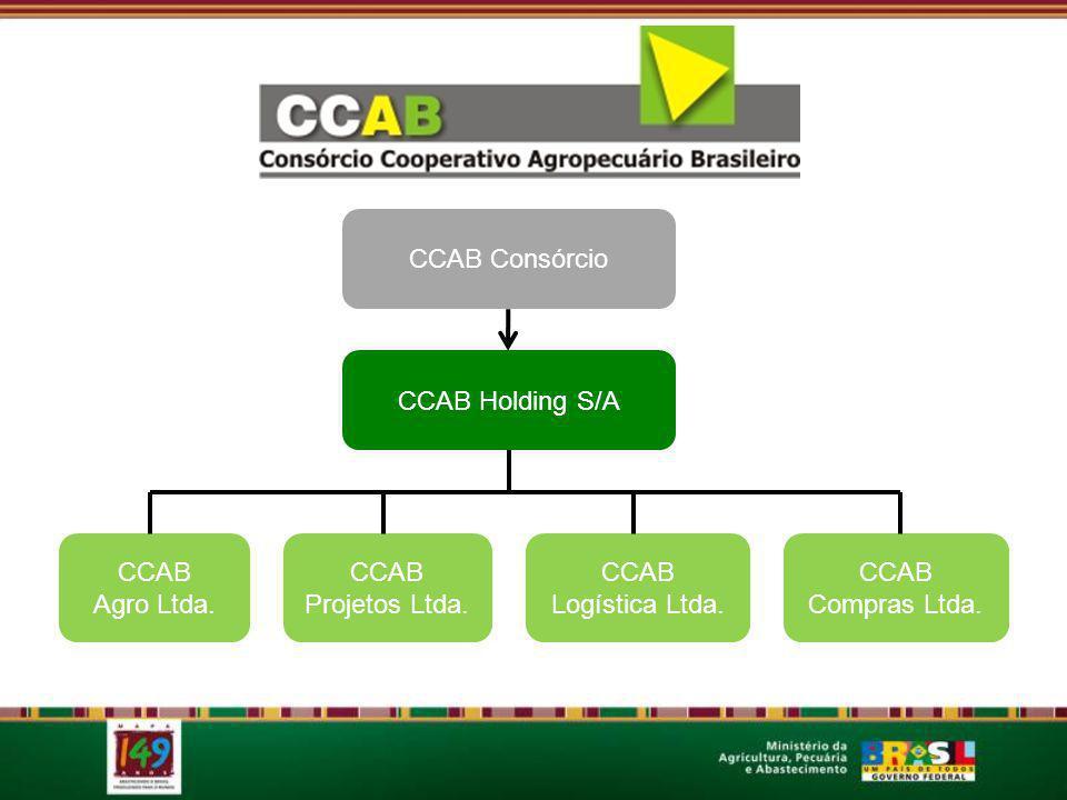 CCAB Consórcio CCAB Holding S/A. CCAB. Agro Ltda. CCAB. Projetos Ltda. CCAB. Logística Ltda. CCAB.