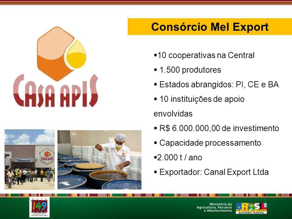 Consórcio Mel Export 10 cooperativas na Central 1.500 produtores