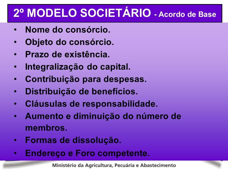 2º MODELO SOCIETÁRIO - Acordo de Base