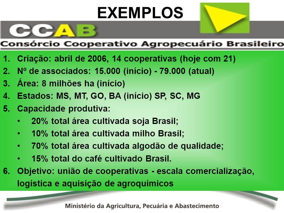 EXEMPLOS Criação: abril de 2006, 14 cooperativas (hoje com 21)