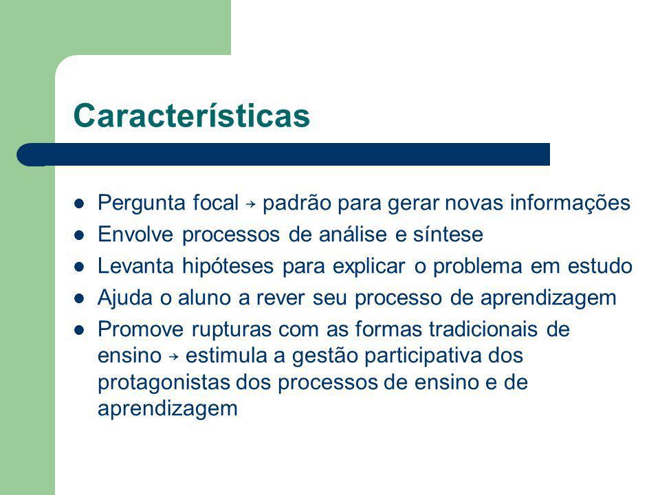 Características Pergunta focal → padrão para gerar novas informações