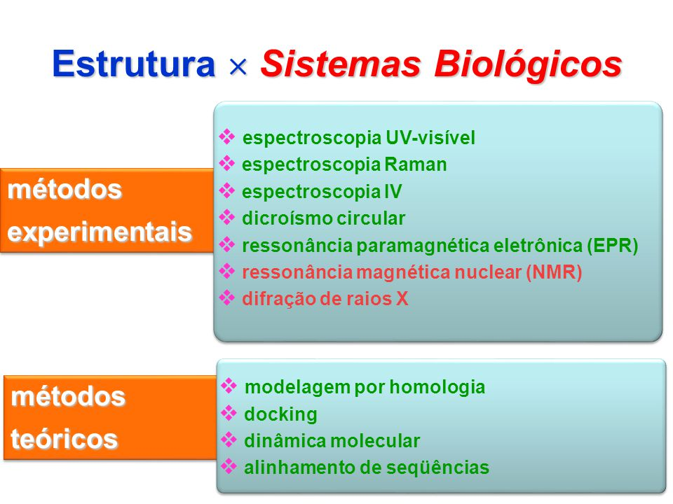Estrutura  Sistemas Biológicos