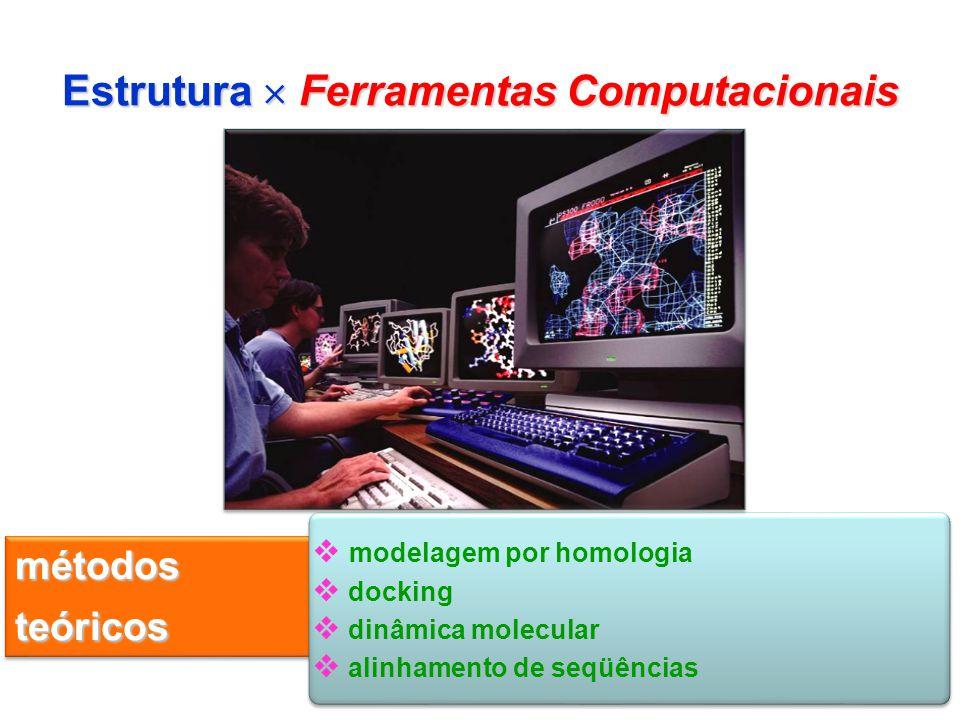 Estrutura  Ferramentas Computacionais