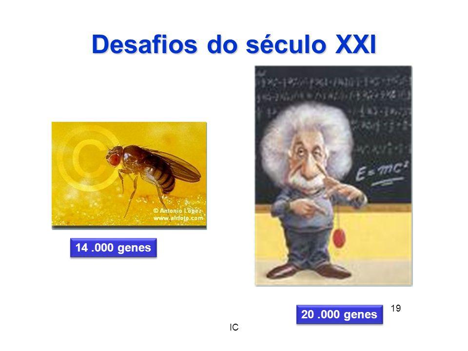 Desafios do século XXI 14 .000 genes 20 .000 genes IC